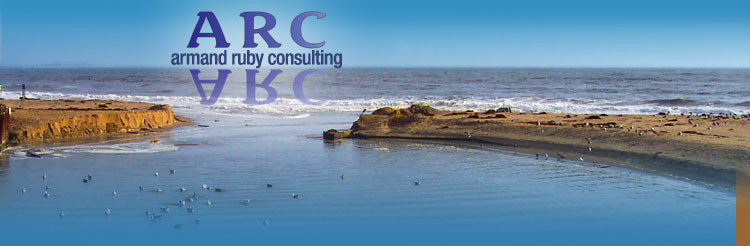 Armand Ruby Consulting